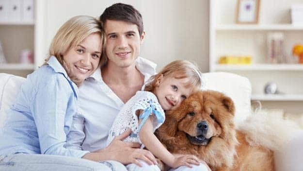Wills & Trusts dog-young-family Direct Wills Wednesbury Oak